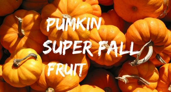 Pumkin Super Fall Fruit Dr Markus Weissenberger A carved pumpkin is a carved version of a pumpkin that can be worn or used to spawn golems. pumkin super fall fruit dr markus weissenberger